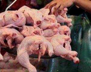 Украина среди мировых лидеров по экспорту курятины